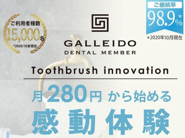GALLEIDO DENTAL MEMBER 料金