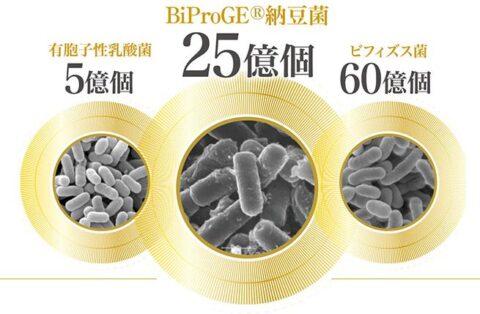 BiProGE納豆菌 有胞子性乳酸菌 ビフィズス菌 ロンガム種