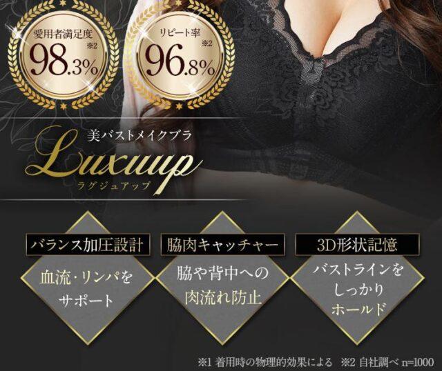 luxuup ラグジュアップ ナイトブラ 特徴