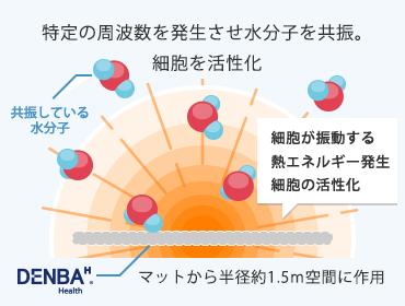 DENBA抗酸化技術
